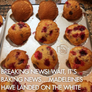 bakingnews